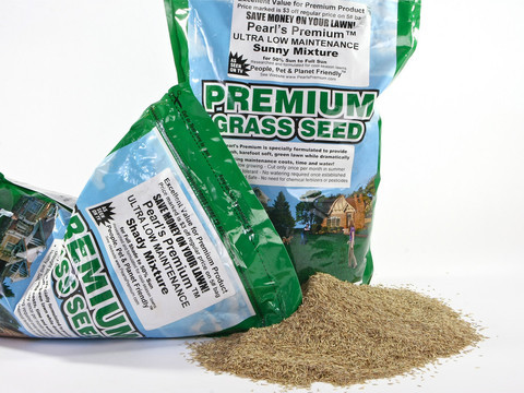 Pearl's Premium Lawn Seed